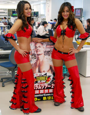 wwe diva bella twins bikini