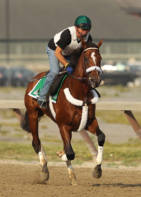 ELMONT, NY - JUNE 08:  Exercise rider Heriberto Pulgar runs Mucho Macho Man during a morning training session in preparation for The Belmont Stakes at Belmont Park on June 8, 2011 in Elmont, New York.  (Photo by Al Bello/Getty Images)