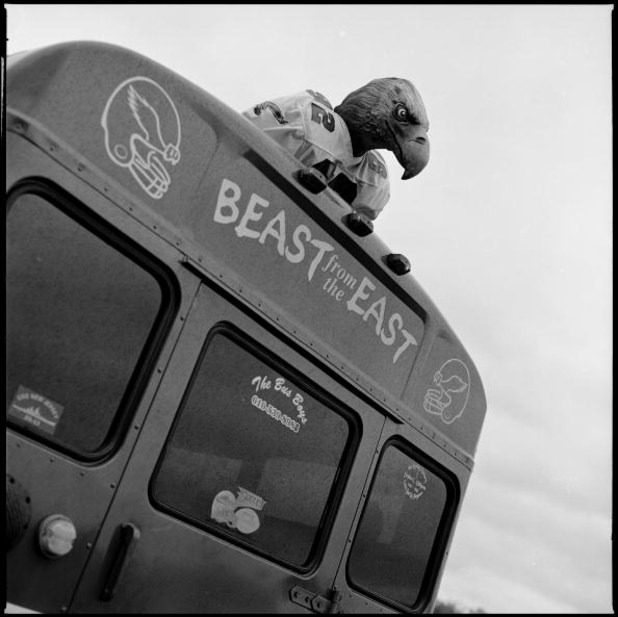 PHILADELPHIA - NOVEMBER 18: An eagle mascot sits on a tailgating bus in a carpark during the game between the Miami Dolphins and the Philadelphia Eagles at Lincoln Financial Field on November 18, 2007 in Philadelphia, Pennsylvania. Born and bred into Amer